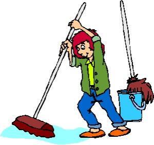 paardenborstels schoonmaken